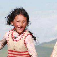 2011 tibet